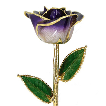 Single Purple Colored Gold Rose