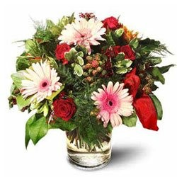 Roses with Gerbera Daisies