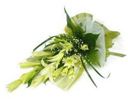 Pure Love Lily Bouquet